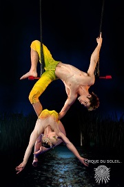 duo-fixed-trapeze