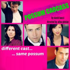 possum understudies